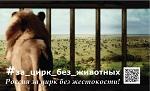 """>17 октября, Москва. Ровно полгода по Москве и России ездят грузовики с социальной рекламой """"За цирк без животных"""""""