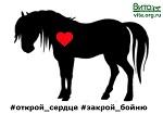 Открой сердце! Перформанс за права животных