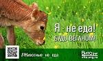ВПЕРВЫЕ! <br>Веганская соцреклама<br> «Животные – не еда!»<br> ко Дню Вегана