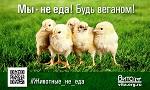 ВПЕРВЫЕ <br>Веганская соцреклама<br> «Животные – не еда!»<br> ко Дню Вегана