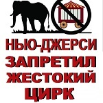 >Нью-Джерси – первый штат, запрещающий использование животных в цирках