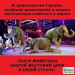 >В правительстве Украины одобрили законопроект о запрете эксплуатации животных в цирках