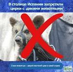 >В Мадриде запретили цирк с дикими животными