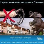 Цирк с животными запрещают в Словакии