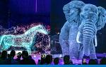 >Немецкий цирк Ронкалли стал первым в мире, заменившим животных голограммами