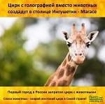 >Цирк с голографией вместо животных создадут в столице Ингушетии Магасе
