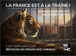 >Две трети жителей Франции выступают за «цирк без диких животных» — опрос