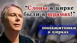 >О цирках с животными - фильм молодого режиссера Ангелины Подорожной</a>          border=