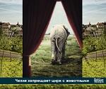 >Конец дрессуре: Парламент Чехии запретил цирк с животными