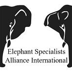 >Международный альянс специалистов по слонам сделал заключение по ситуации с продажей слонёнка Эколь из зоопарка в цирк Запашных
