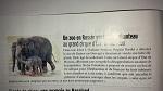 Брижит Бардо направила письмо президенту России Путину В.В. о необходимости вернуть слоненка Эколь, проданного ростовским зоопарком цирку Запашных