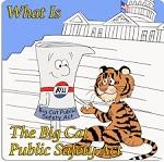 >Шаг к победе для спасения больших кошек! Палата представителей США проголосовала за принятие Закона об общественной безопасности больших кошек
