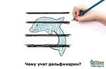 >Чему учат дельфинарии?