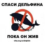 Запрет океанариумов в мире