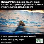ПОБЕДА! Челябинск убрал из планов строительство дельфинария