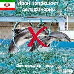 Иран запрещает дельфинарии