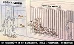 Госдума нарочно искажает предложение зоозащитников, чтобы не решать проблему бездомных животных и множить по стране концлагеря-усыпалки?