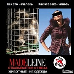 >MADELEINE отказывается от меха