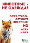 """>Впервые социальная антимеховая реклама """"Животные - не одежда!"""" в  автобусах Череповца"""