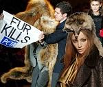 Karl Lagerfeld отказался от животного меха