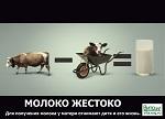 Молоко жестоко или 9 причин отказа от молока