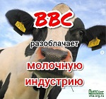 BBC расследует «Мрачную сторону молочной индустрии» в известном телешоу