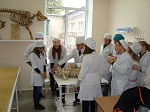Гуманные альтернативы опытам на животных, внедрённые ВИТА в начале года на трёх кафедрах Казанской ветакадемии, работают!