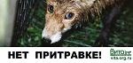 ВНИМАНИЕ! В России<br> легализуют незаконные<br> притравочные станции!