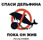 Запретить добычу и содержание в неволе дельфинов, косаток, китов и других морских млекопитающих
