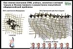 Ещё одного из четырёх<br> отловщиков косаток<br> оштрафовали <br>на 56 млн рублей