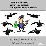 >Глушилки, заборы и мужчины в масках: что скрывает китовая тюрьма - ren.tv