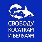 >Мировые специалисты по морским млекопитающим потребовали выпустить животных из китовой тюрьмы