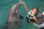 >УЖАСЫ ОКЕАНАРИУМА. Количество нападений дельфинов, содержащихся в неволе, растет: 10-летний ребенок был ранен на семейном празднике