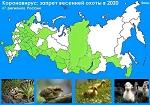 >Коронавирус: запрет весенней охоты 2020 в 47 регионах России</a>          border=