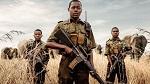 >Вега́нский батальон женщин Зимбабве встал на защиту диких животных от охотников. Джеймс Кэмерон спродюсировал фильм про женщин-вега́нов, сражающихся с браконьерами