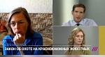 >Снова о разрешении охотиться на краснокнижных животных. Президент ВИТЫ Ирина Новожилова - в интервью телеканалу Дождь