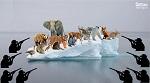 >Аномалии с климатом и маниакальная страсть к убийству. Как глобальное потепление затрагивает интересы охотников