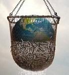 >Всемирный день океанов. Океан - это жизнь. Морской заговор: Тайна устойчивого рыболовства / Seaspiracy