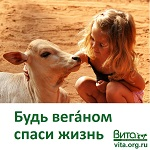 >Международный день защиты детей 1 июня  - ВИДЕО