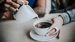 >«15 минут Доминиона хватило, чтобы кафе стало вега́нским» - ВИДЕО