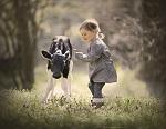 >Международный день без мяса - День любви к животным, день за мир в природе          border=