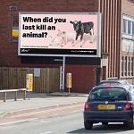 """""""Когда Вы в последний раз убили животное?"""" – новые рекламные щиты в Великобритании"""