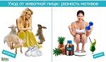 Уход от животной пищи: разность мотивов. Отношение вега́нов к теме ЗОЖ