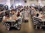 Еще один город США - Сан-Франциско - ограничит потребление животной пищи в тюрьмах и больницах