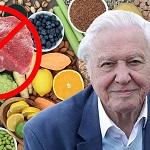 """>Дэвид Аттенборо призывает общество отказаться от мяса и перейти на вега́нское питание в новом фильме """"Жизнь на нашей планете"""""""