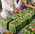 """ПРОРЫВ: Япония запускает бренд веганских """"мясных"""" изделий 2foods с более, чем 60 вариантами продукции"""