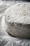 Эволюция веганских сыров в мире