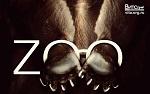 >Зоопарк. 10 фактов