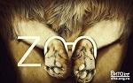 Кто финансирует содержание животных в зоопарках/тюрьмах? Мы, налогоплательщики!